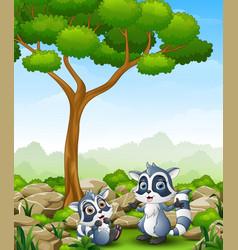 Cartoon raccoon with raccoon cub in the jungle vector