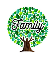 family tree concept for genealogy vector image