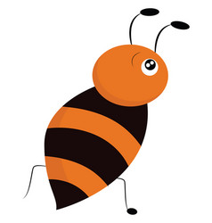 image e honey bee or color vector image