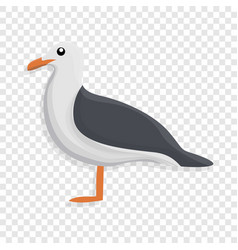 seagull icon cartoon style vector image
