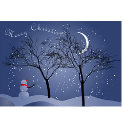 winter night sky and snowman vector image
