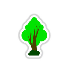 set of labels with shadow tree icon tree vector image vector image