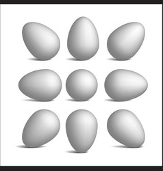 set realistic white eggs vector image vector image
