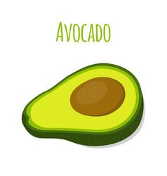 Avocado slice tropical summer fruit flat style vector