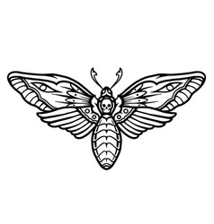 deaths head hawk moth tattoo concept vector image