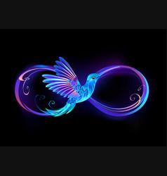 Infinity symbol with glowing hummingbird vector