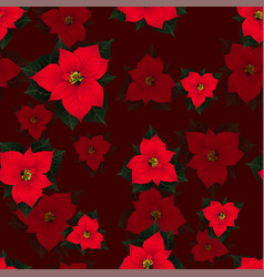 red poinsettia seamless on red background vector image