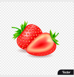 red strawberries realistic style vector image