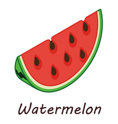 watermelon icon isometric style vector image