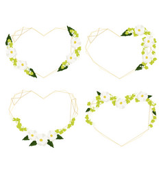 white cosmos and green hydrangea heart golden vector image