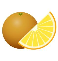 Orange fruit isolated on white background vector image vector image