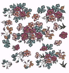 Collection flowers in beautiful antique style vector