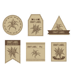 Craft labels with aloe stock vector