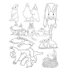 cute pets line art vector image