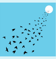 flock of many birds flying towards sun vector image