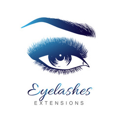lady stylish eye and brows with full lashes vector image