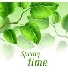 Spring time with branches of green vector