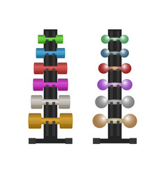 stand with a dumbbell set vector image