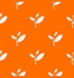 tea leaf sprout pattern seamless vector image