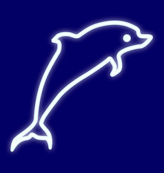 the image of a dolphin vector image