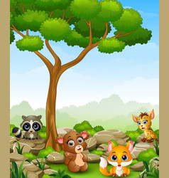Wild animal cartoon in the jungle vector