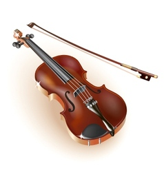 Classical violin on white background vector image vector image