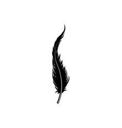 feather silhouette isolated on white background vector image vector image