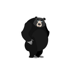 Baribal sad emoji american black bear wailful vector