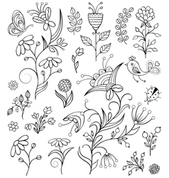 Hand drawn flowers on white background vector
