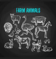 set farm animals in chalk style on blackboard vector image