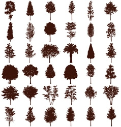 Trees silhouettes set vector image vector image