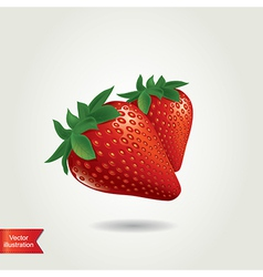 Strawberry isolated vector image vector image