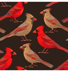 Seamless nothern cardinals vector image
