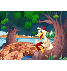 A duck reading near the bridge vector