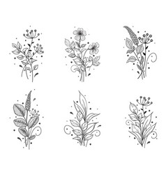 Hand drawn floral set with flowers and leaves vector