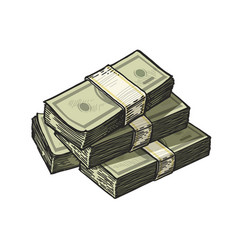 Much money wads of cash earnings finance vector