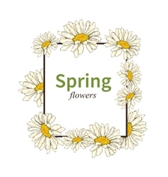 Spring flower frame background vector image
