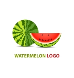 Watermelon logo design vector image