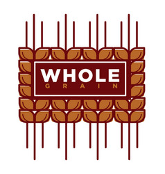 whole grain natural product promotional emblem vector image