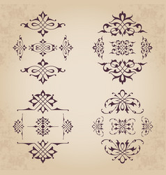 Calligraphic design elements in vintage style vector