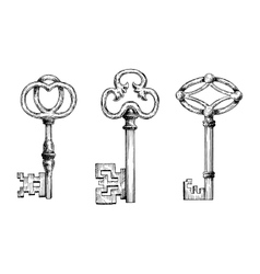 Engraving sketches of medieval keys vector image vector image