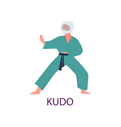 athlete engaged in martial arts hones tricks and vector image