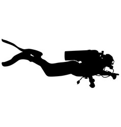 black silhouette scuba divers on a white vector image