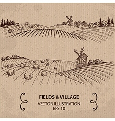 Fields and Hay vector