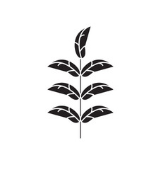 pecan leaf black concept icon pecan leaf vector image