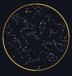 night sky with constellations vector image vector image