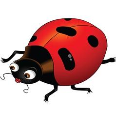 Ladybird cartoon vector image vector image