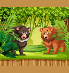 Bears in the jungle vector
