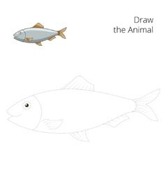 Draw herring fish educational game vector