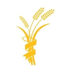Ears wheat barley or rye visual graphic vector